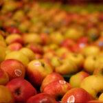 Natur.com - Manukahonig, Obst und frisches Gemüse
