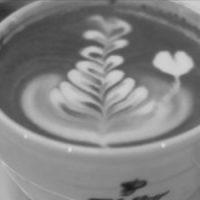 Hochwertiger Kaffee für den guten Kaffeetisch von Dallmayer!